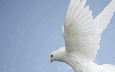 Evangelium Ježíše Krista, 4. část: Dar Ducha Svatého