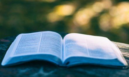6 rad pro úspěšné studium písem