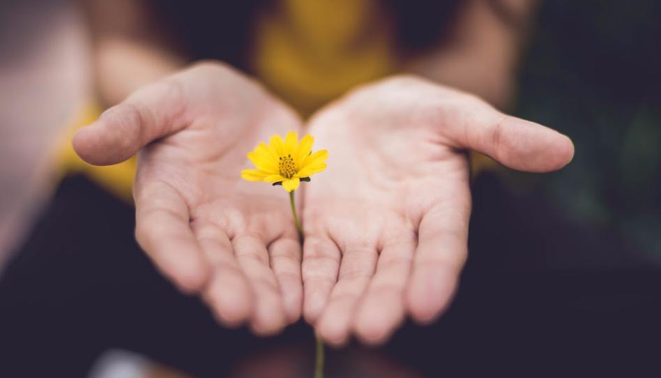 žena s kytkou v dlaních