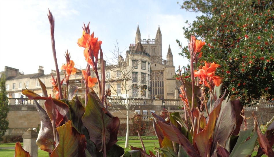 anglický park s květinou