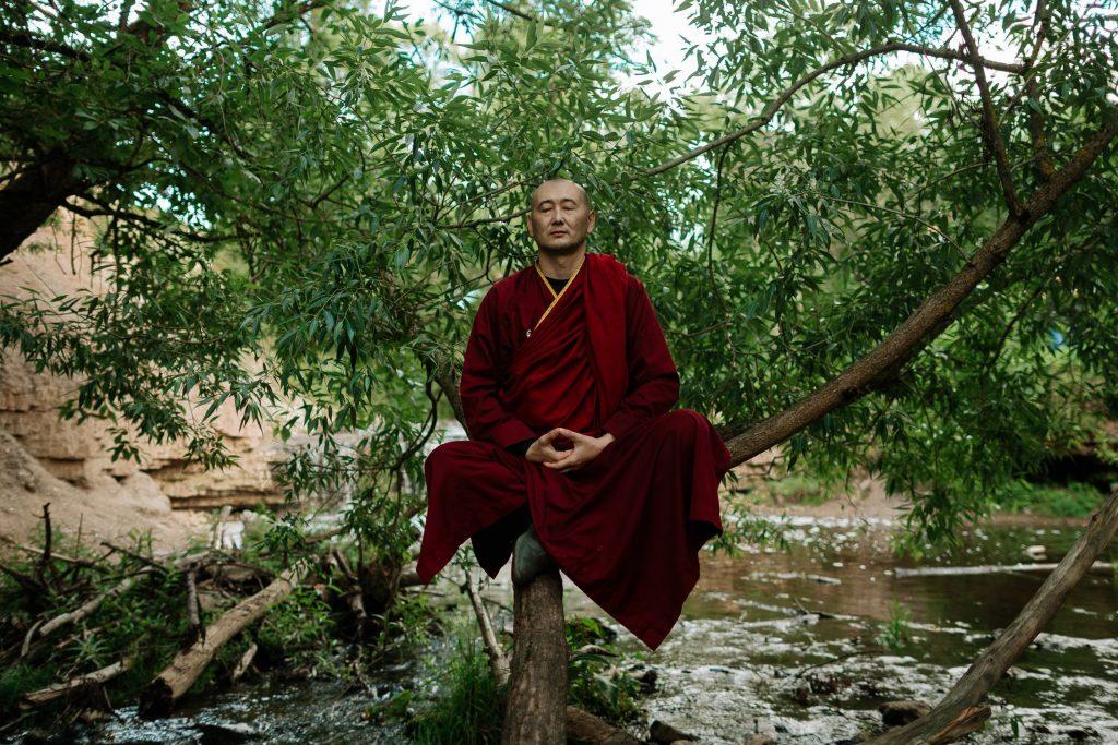Mnich sedící na stromě medituje